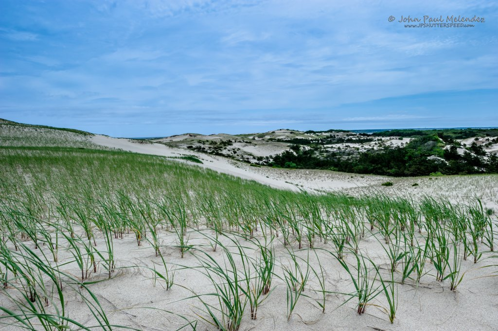 Cape Cod Gallery Prints 2017 jpeg-42